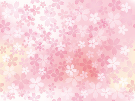 Cherry blossom background 16