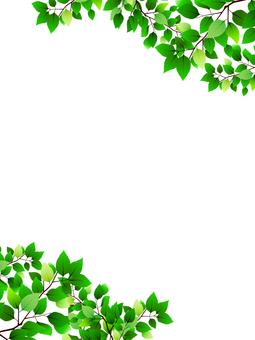 Leaf frame vertical position