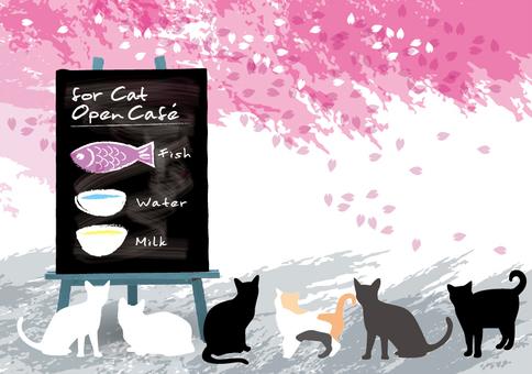 Open cafe message card Sakura and cat