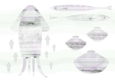 Marine life (squid, shellfish, saury)