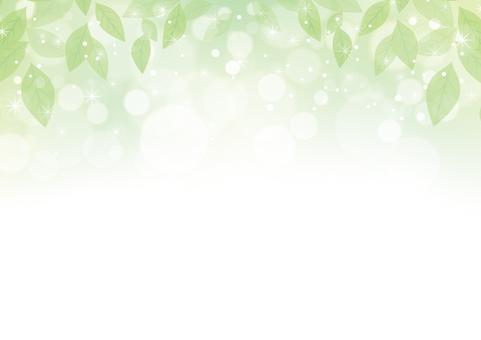 Green leaf frame 06