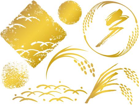 Various e_ golden_ white_cs
