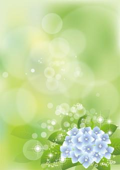 녹색 & 수국 19