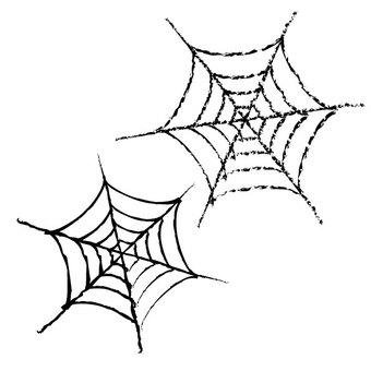 spiderweb