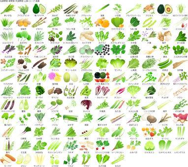 Unusual vegetables and seaweed (no PDF compatible file)