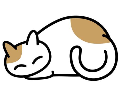 A nap sleepy white catch