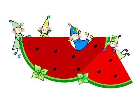 Dwarf_Watermelon