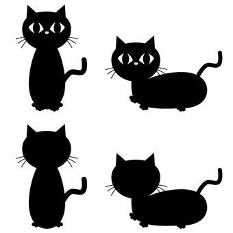 검은 고양이 4 샷