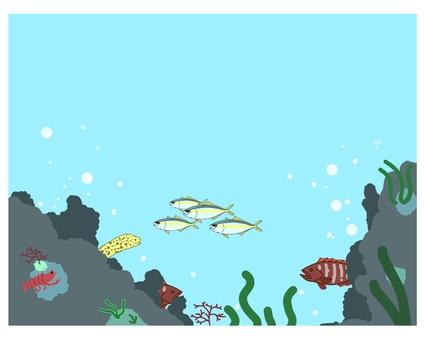 海中のフレーム