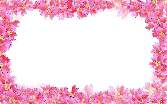 Cherry frame 14