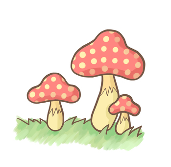 Poison mushrooms