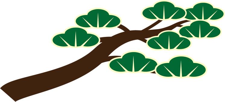 Pine branch / Pine