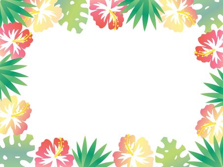 Tropical frame 1