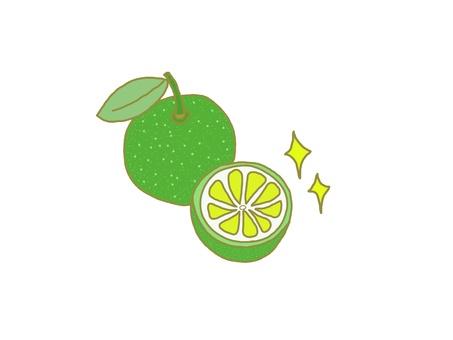 Citrus ③