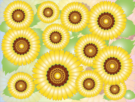 Packaging paper design (sunflower field)