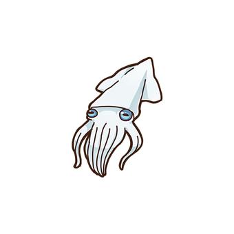 Squid 01_B