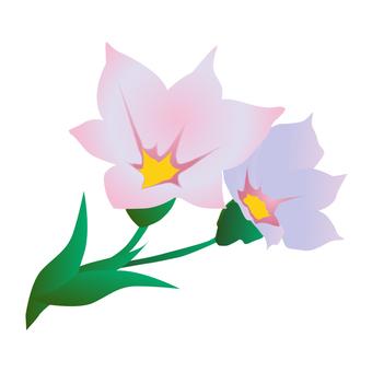 Flower material 3