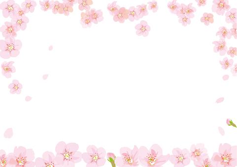 만발한 벚꽃의 틀