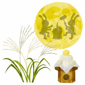 月亮觀察/牛仔/餃子/月木