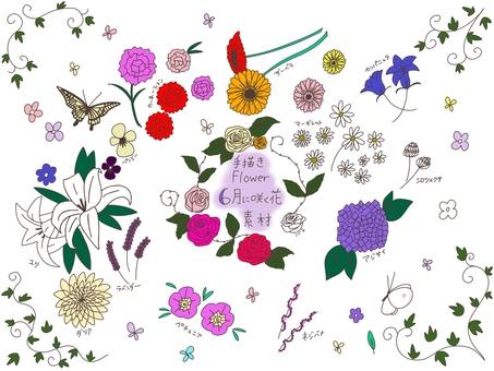 Flowers blooming in June