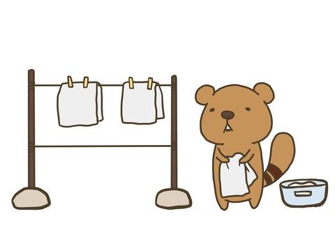요코시마 다람쥐 (세탁)