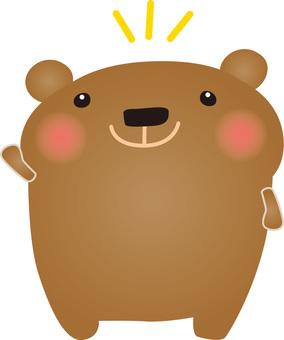 I noticed the bear