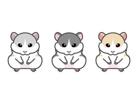 3 kinds of hamsters