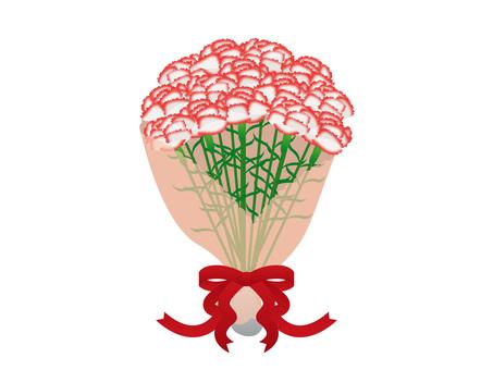 Carnation _ bouquet 02