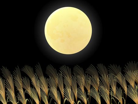 Full moon and Suki background 2