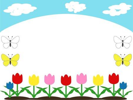 Tulips, spring frame