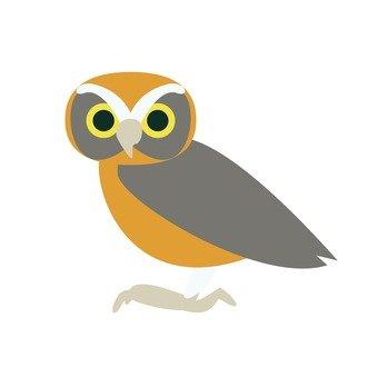 Owl (1)