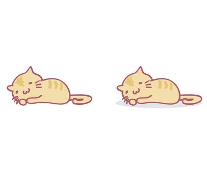 Cat / animal / 01