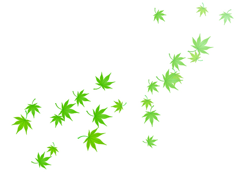 Dancing foliage (green · summer)