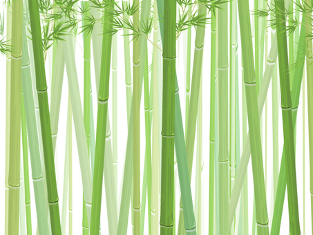 Bamboo forest _ horizontal ②