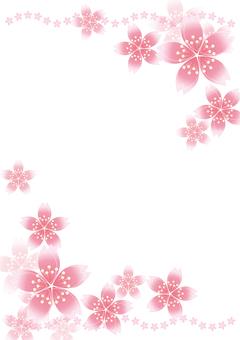 Sakura cherry line 18