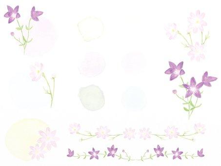 秋の花フレーム・ライン 淡い水彩