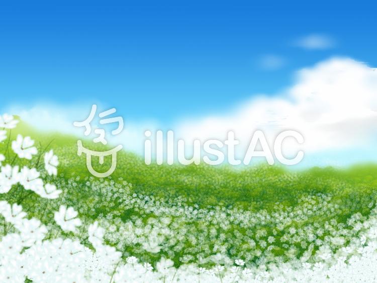 白い花畑のイラスト