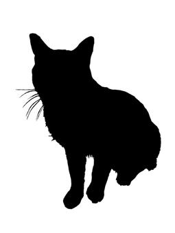 Silhouette 2 Cat 2