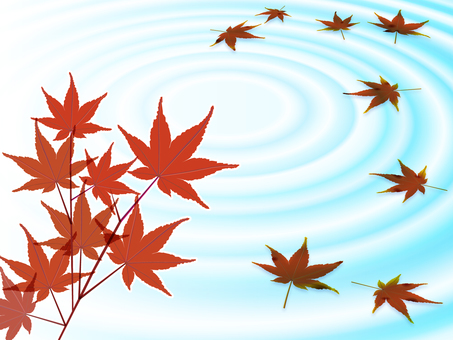 Autumn leaves on ripples