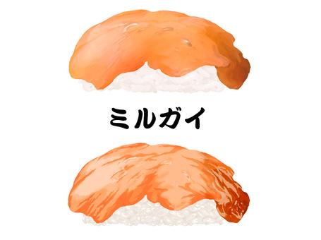 Nigiri Sushi Milgai壽司