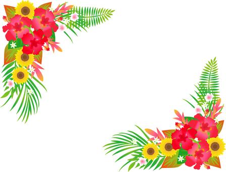 热带花卉卡
