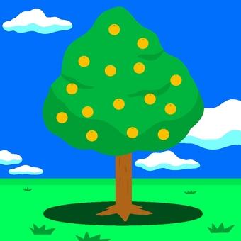 Prairie fruit tree