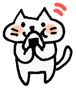 Rice ball cat