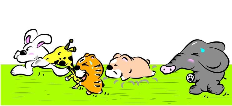 Marathon competition animal