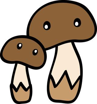 Mushroom parent and child