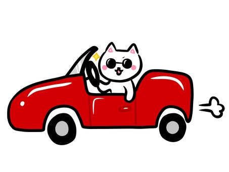 White cat series open car