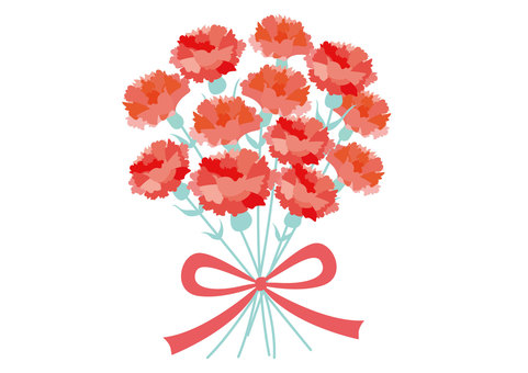 Mothers day, mother's day, carnation
