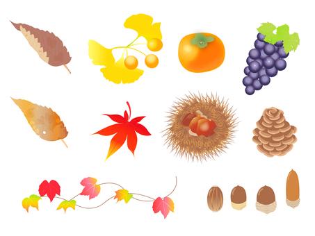 Autumn parts material