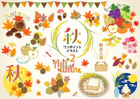 Autumn 248
