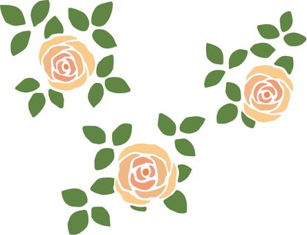 Roses _ Orange